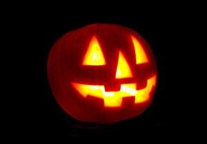 pumpkins-2-1564938