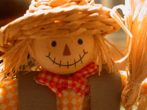 scarecrow-doll-1255628